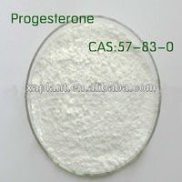 GMP Manufacturer Progesterone Powder