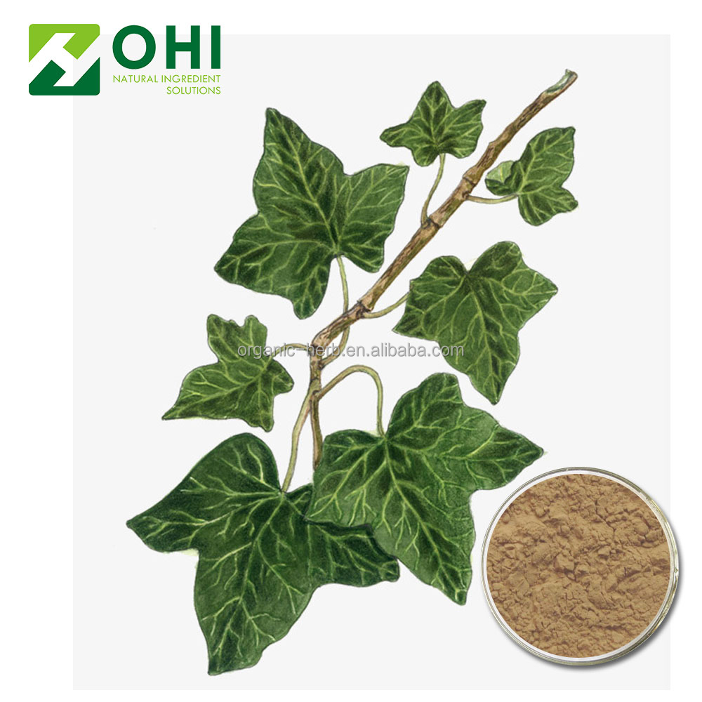 Water soluble ivy leaf extract powder plant extract