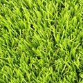 Outdoor Decoration Static Synthetic Artificial Grass for Turf Protection Flooring