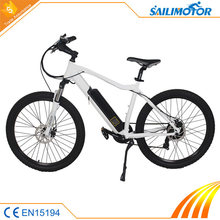 Brand new technology 250w e cycle electric bike with hidden cable
