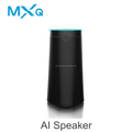 OEM/ MXQ HF30 Wifi BT Alexa Voice Activated Speaker