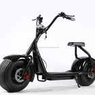 1000w Electric Street Scooter/Motorcycle for Adult