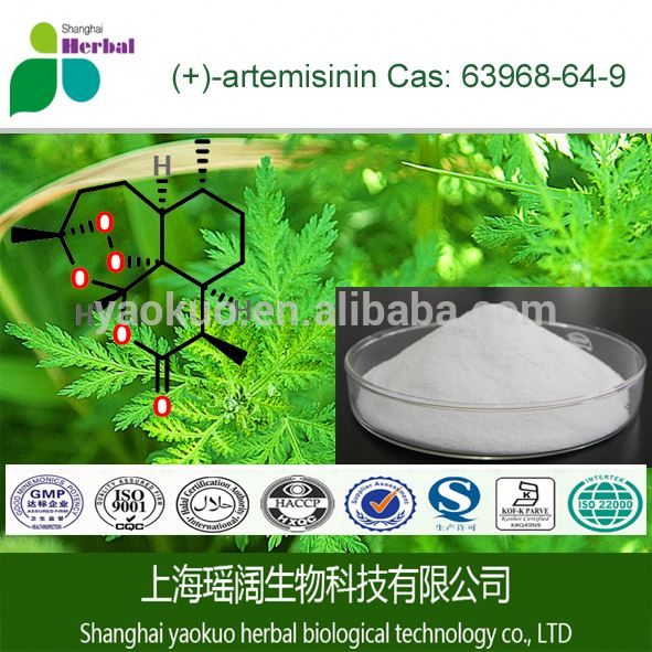 Artemisinin cancer with natural wormwood extract buy artemisinin
