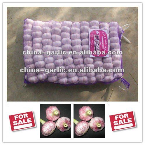 Chinese Garlic/China Garlic Price 2013 In Different Packaging