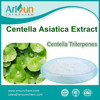 Centella Asiatica Extract Powder Organic Centella Triterpenes