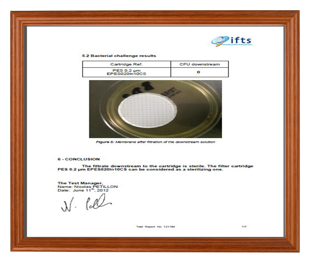 New arrival vodak filter for Russia market