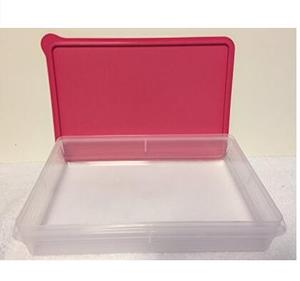 Cold Cut Snack-Stor Brownies Cookie Keeper New Hot Pink