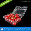custom vacuum formed pet tray fresh fruit blister packaging