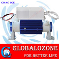 Ceramic ozone generator kits with ozone tube 2G 3G 5G 6G 10G