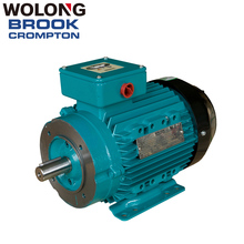 BROOK 0.75 KW 2p High Efficiency Asynchronous AC Electric Three Phase Water Pump IE3 30 hp induction motor 0.37KW-400KW