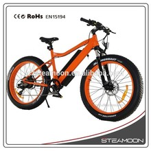 Mountain Exercise Electric Bike non-folding Fat tyre Beach electric bike/bycicle/ebike