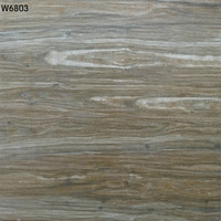 Hot sale 60x60 3d new model flooring tiles