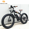 Suncycle best selling fat bike electric 48v electric bicycle e bike made in china