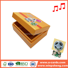 Custom Voice Recorders For Stuffed Animals And Paper Music Box
