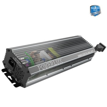 New Version US/EU Standard 400w 600w 1000w Available Dimmable Digital Electronic Ballast