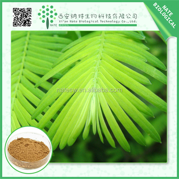 China Wholesale Market herbal Extract / natural mimosa pudica extract 10:1