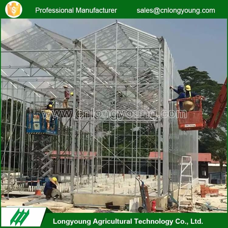 Fashion professional agricultural stable structure glass greenhouse