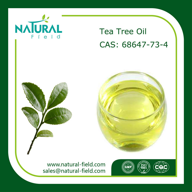 Antibacterial And Refreshing Tea Tree Essential Oil, Pure Tea Tree Oil
