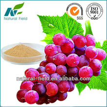 Grape seed extract proanthocyanidines 95% OPC