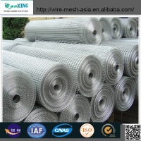 hot sale low price BWG 19 galvanized welded wire mesh for building/construction,animal cage(Direct Factory)
