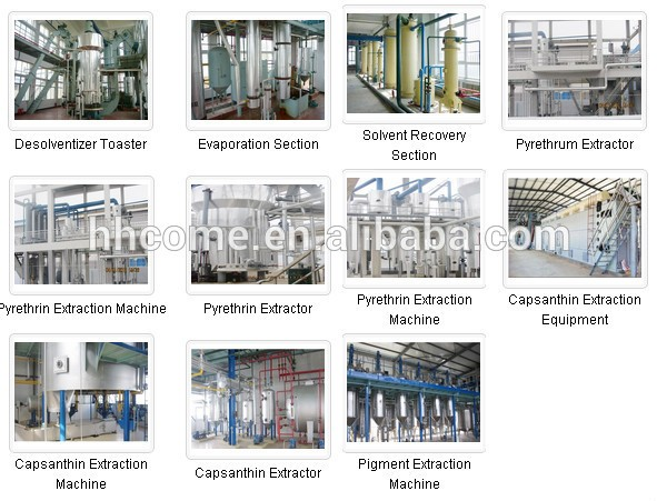 50TPD Professional Vegetable Oil Extraction Equipment