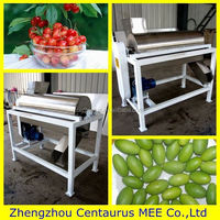 Low price jujube/cherry/olive/plum/apricot pitter with fast delivery