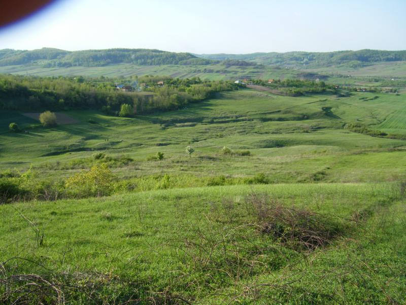 Agricultural land for lease in Romania