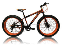 Hot selling DIY 24/26 inch fat tire bike/ snow bike/cycling with fat 4.0 tire ,OEM available, made in China