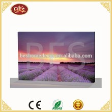 China Giclee Canvas Flower Printing With Cheap Cost