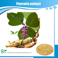 Pure Plant Extract Pueraria Lobata Root Extract Pueraria Extract Powde