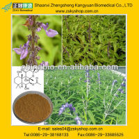 Factory Supply 100% Natural Coleus Forskohlii Extract Forskolin