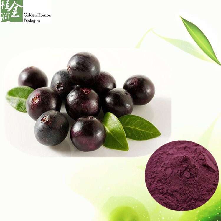 Factory Price Natural Acai Berry Extract Powder