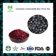 Natural Black currants extract powder Ribes nigrum extract 25% Anthocyanin