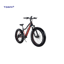 Manufacturer cheap super quality 26 electric mountain bike mid motor