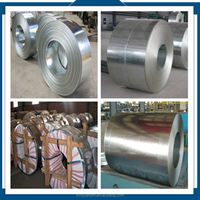mild cold roll galvanized steel coil with 25-800mm width uesd for construction