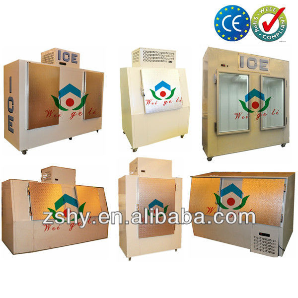 Gas Station Fan Forced Ice Storage Freezer with CE/RoHs Certificates