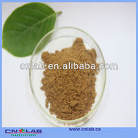 GMP certified tongkat ali root extract 200 1