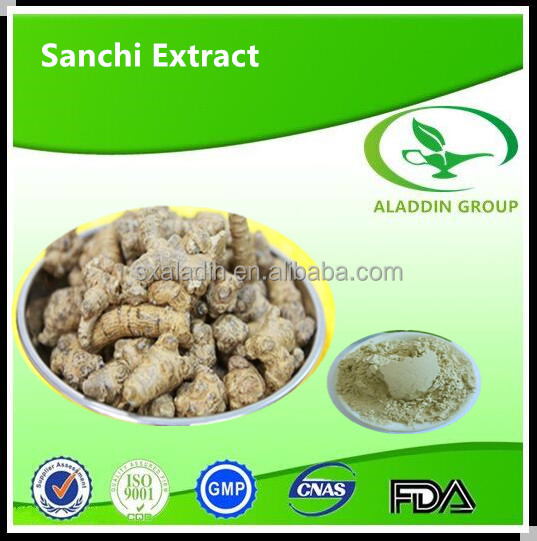 shachi powder/sanchi root extract /sha chi plant extract /san qi