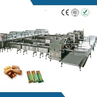 Chinese full auto feeding and packing machine foren meat