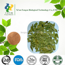very hot sale senna leaf extract powder with good quality