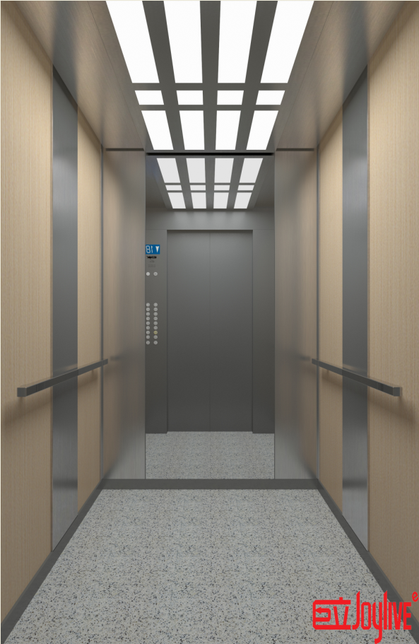 Building Elevation Commercial Residential Glass Elevators