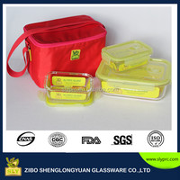 New!High quality rectangular glass food warmer container storage with bag