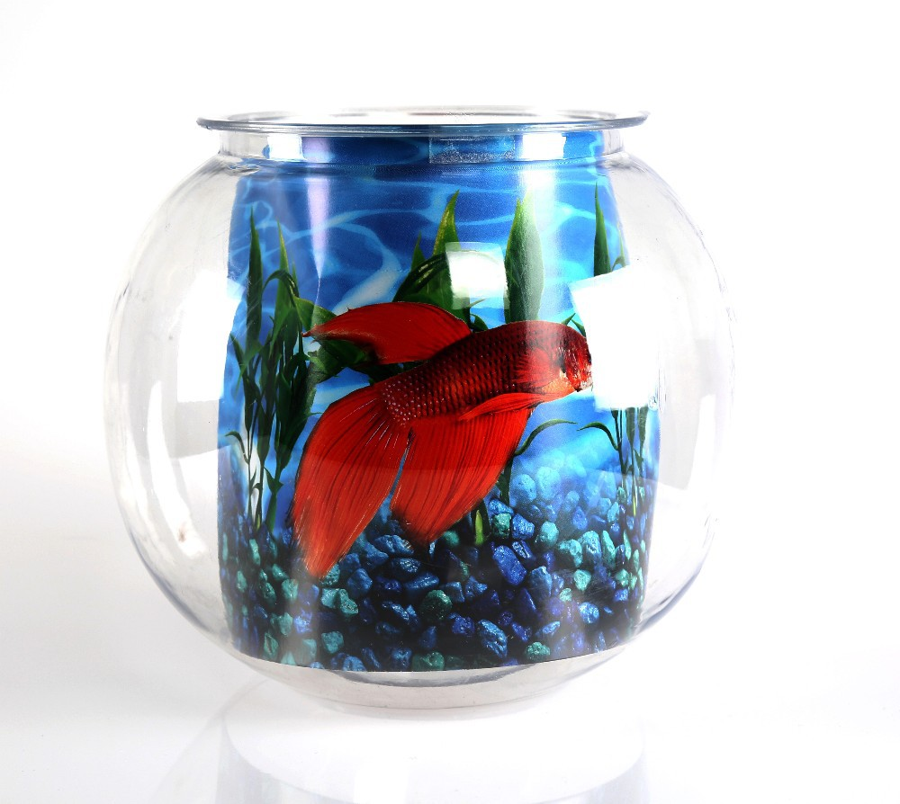 Plastic goldfish bowl