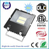 Factory supply DLC cETLus SAA CE 10W to 200w led flood lighting with Philip chip
