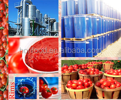 2016 newest large iron drum 220L concentrated tomato sauce of 36-38% brix thick paste