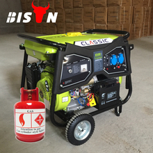 BISON Air Cooled Electric Start Portbale Natural Gas Generator 5kw, LPG Generator Set