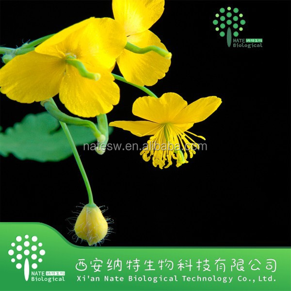 GMP manufacturer natural swallowwort extract Chelerythrine By HPLC
