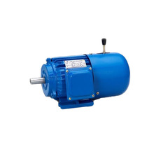 MS series Three phase Induction Electric gear motor 380v