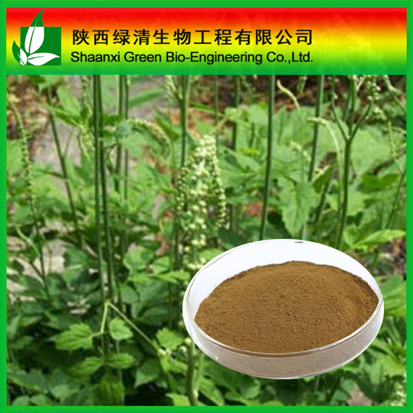 Black Cohosh Extract Triterpene Glycosides powder CAS:88105-29-7