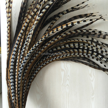 wholesale 50-55inch long reeves pheasant tail feathers